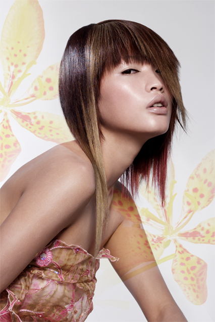 Grace salon Collection 2004
